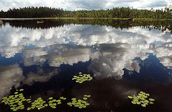 aikuiskoulutus kuopio tullintorin parkkihalli