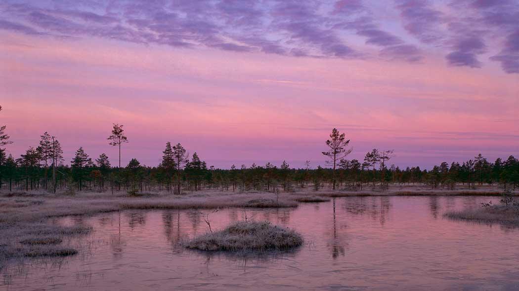 Lauhanvuori nationalpark - Utinaturen.fi 316f4041f0