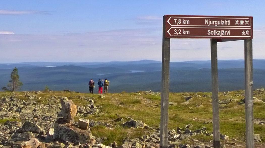 Översikt vid Joenkielinen. Bild  Tuija Kangasniemi Forststyrelse 2313c3b2a6