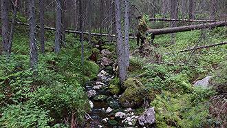 Helvetinjärvi nationalpark - Utinaturen.fi 1063d93a7c