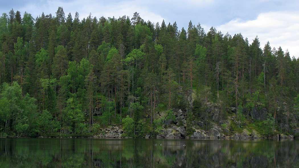 Kakonsalo-området - Utinaturen.fi 6a0a7691d5