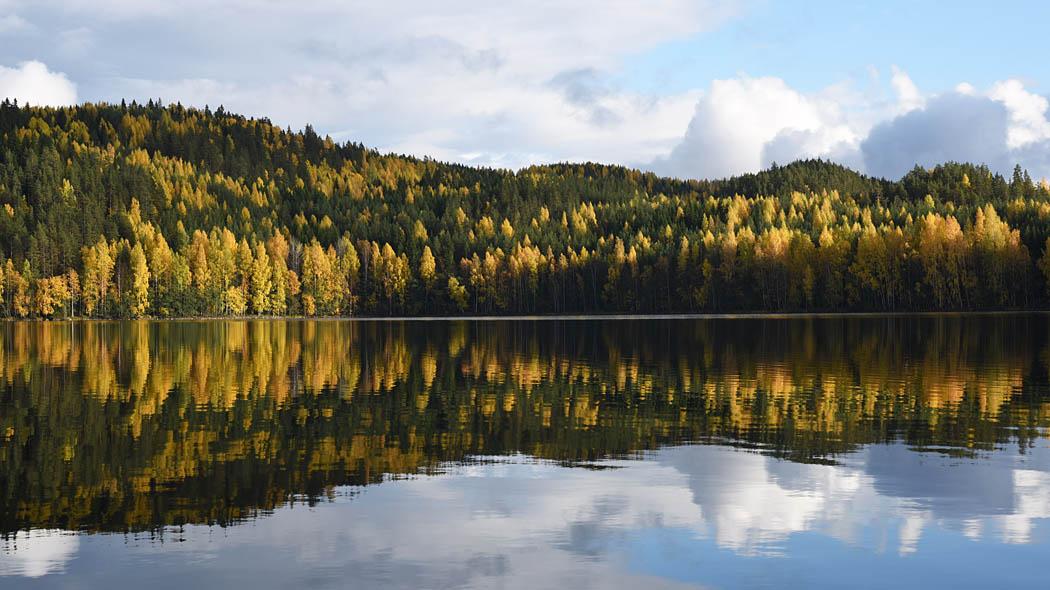 Kolovesi i Oktober. Bild  Mari Laukkanen 263de12014
